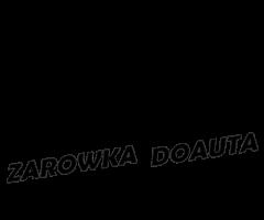 Jaka żarówka i oświetlenie do auta na zarowkadoauta.pl